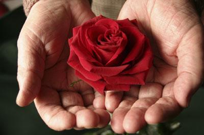 Donare la cosa pi bella i ragazzi di sessant 39 anni for Donare un giardiniere